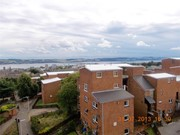 flat to rent kinghorne road dundee