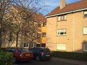 flat to rent logie park south-lanarkshire