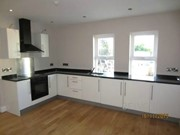 flat to rent princetown road co-down