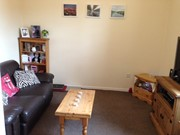 flat to rent university street belfast